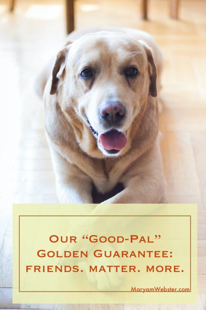 Good Pal Golden Guarantee